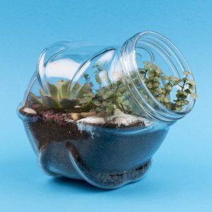 Lol met je eigen minituin in een glazen bol (6-12 jaar)